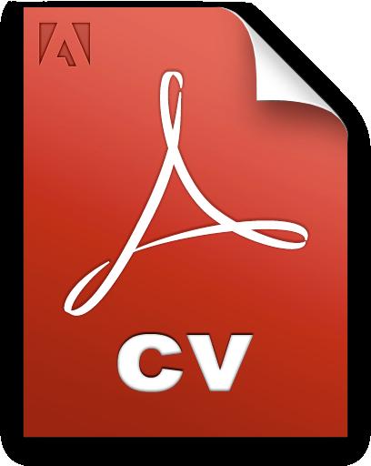 Dan Course - Project Management CV